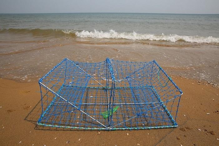 crab trap2